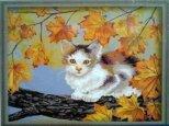 MG021 Непослушный котенок