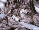 MMC007 Волчья пара