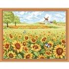 MG164 Солнечные цветы